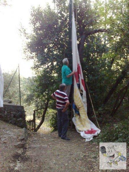Ammaina bandiera Liceto
