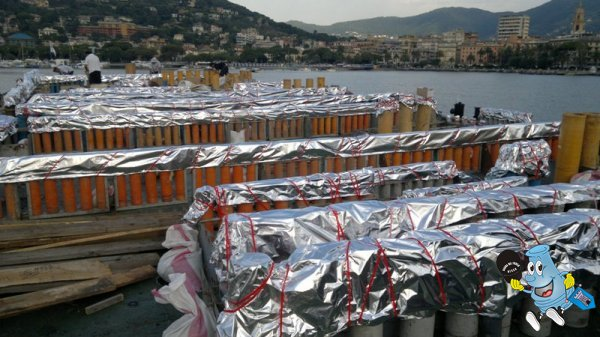 feste di luglio 1-2-3 Rapallo (Ge) - Pagina 4 2012-07-02-1033