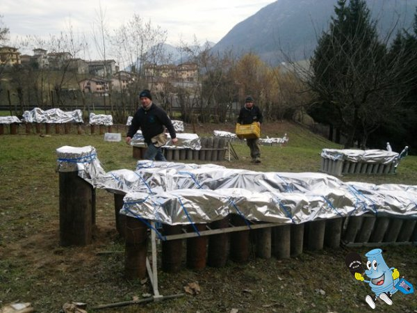 san giovanni bianco (bg) - Pagina 7 2013-03-16-5532